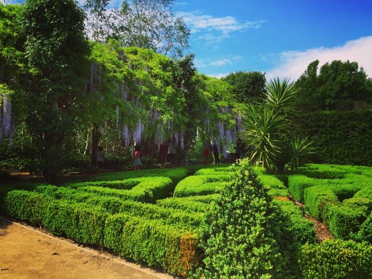 Parterre Garden - Alowyn Gardens