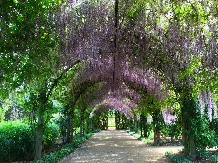 Alowyn Gardens 4